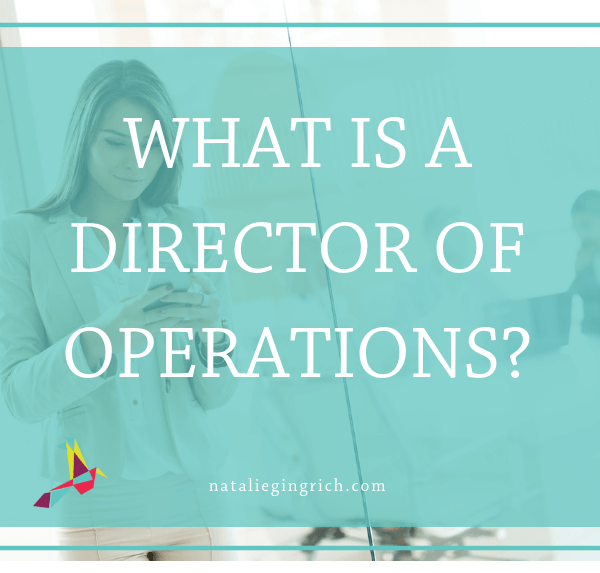 What is a director of operations 1