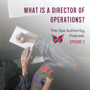 What is a Director of Operations? Episode 2
