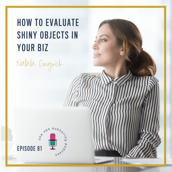 How to Evaluate Shiny Objects in Your Biz